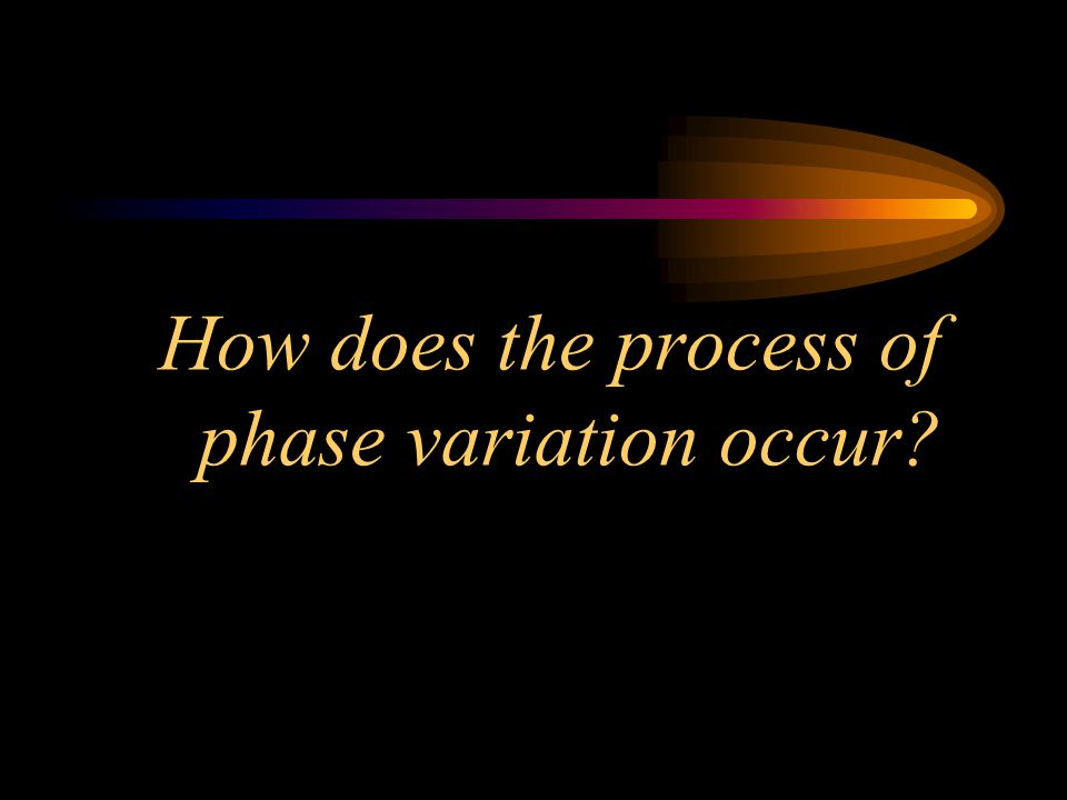 How does the process of phase variation occur?