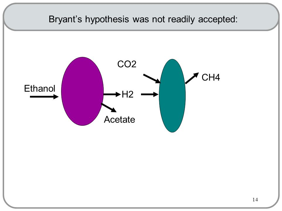 14 Bryant's hypothesis was not readily accepted: Ethanol Acetate H2 CH4 CO2