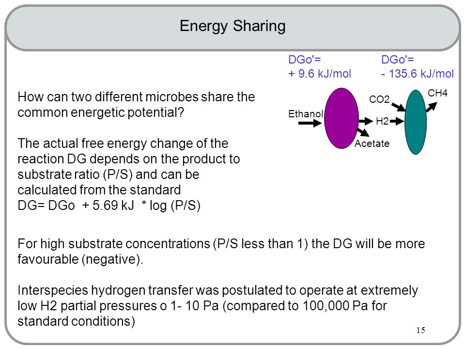 15 Energy Sharing How can two different microbes share the common energetic potential.