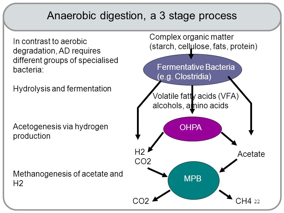 22 Anaerobic digestion, a 3 stage process In contrast to aerobic degradation, AD requires different groups of specialised bacteria: Hydrolysis and fermentation Acetogenesis via hydrogen production Methanogenesis of acetate and H2 Fermentative Bacteria (e.g.
