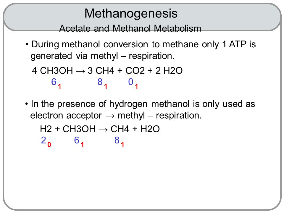 Methanogenesis 6 1 Acetate and Methanol Metabolism During methanol conversion to methane only 1 ATP is generated via methyl – respiration.