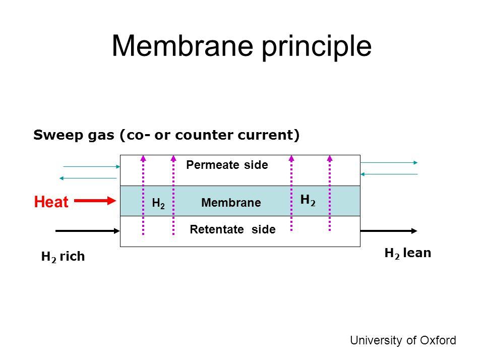 Why Membrane Separator Development.