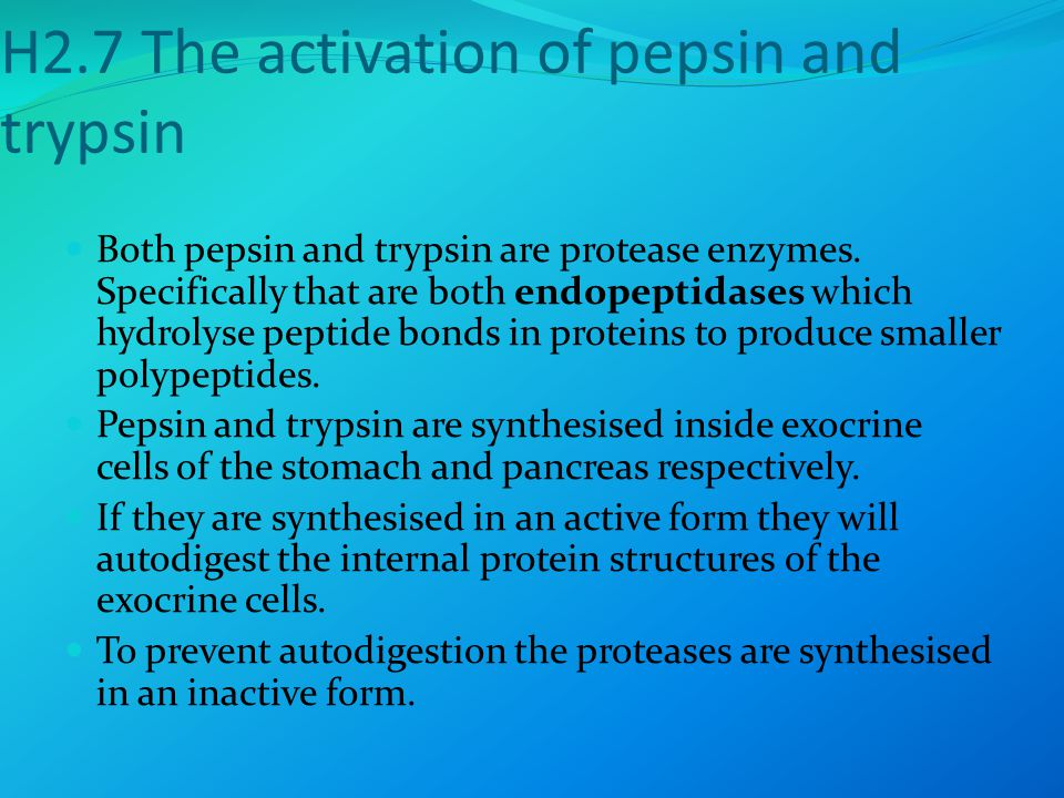 H2.7 The activation of pepsin and trypsin Both pepsin and trypsin are protease enzymes.