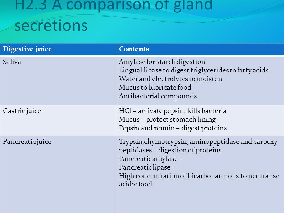 H2.3 A comparison of gland secretions Digestive juiceContents SalivaAmylase for starch digestion Lingual lipase to digest triglycerides to fatty acids Water and electrolytes to moisten Mucus to lubricate food Antibacterial compounds Gastric juiceHCl – activate pepsin, kills bacteria Mucus – protect stomach lining Pepsin and rennin – digest proteins Pancreatic juiceTrypsin,chymotrypsin, aminopeptidase and carboxy peptidases – digestion of proteins Pancreatic amylase – Pancreatic lipase – High concentration of bicarbonate ions to neutralise acidic food