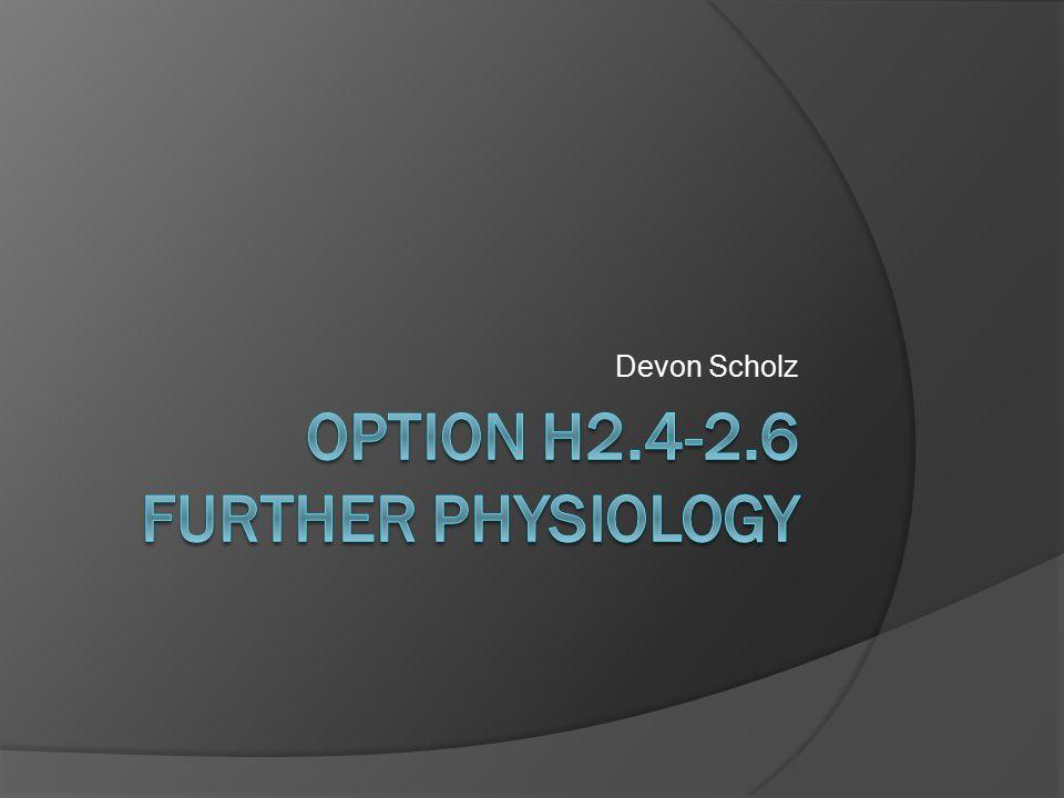 Devon Scholz