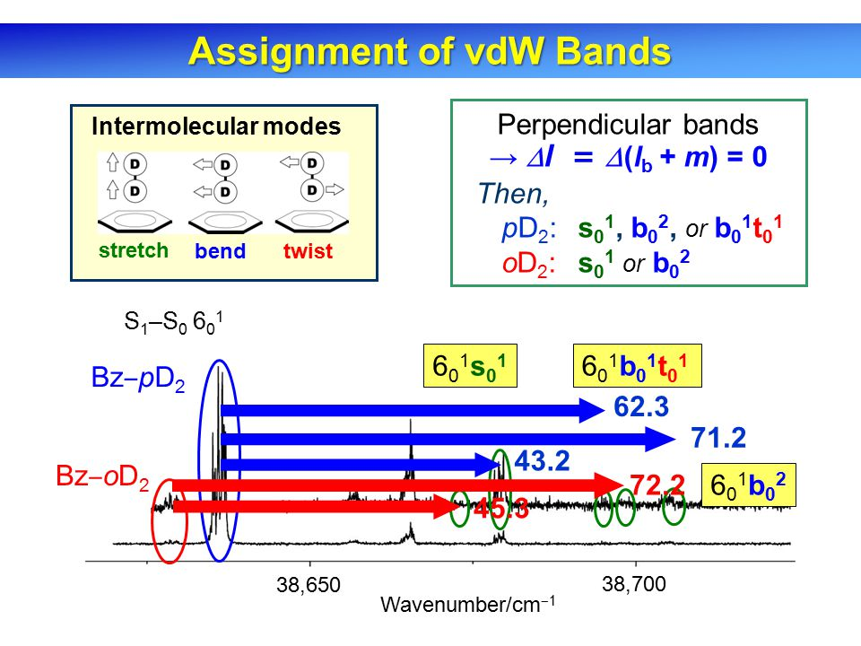 Assignment of vdW Bands 38,650 38,700 ×4 Bz ‒ pD 2 Bz ‒ oD 2 S 1 –S 0 6 0 1 Wavenumber/cm ‒ 1 43.2 45.3 601s01601s01 Perpendicular bands →  l =  (l b + m) = 0 Then, pD 2 : s 0 1, b 0 2, or b 0 1 t 0 1 oD 2 : s 0 1 or b 0 2 Intermolecular modes stretch bendtwist 601b02601b02 71.2 72.2 62.3 601b01t01601b01t01
