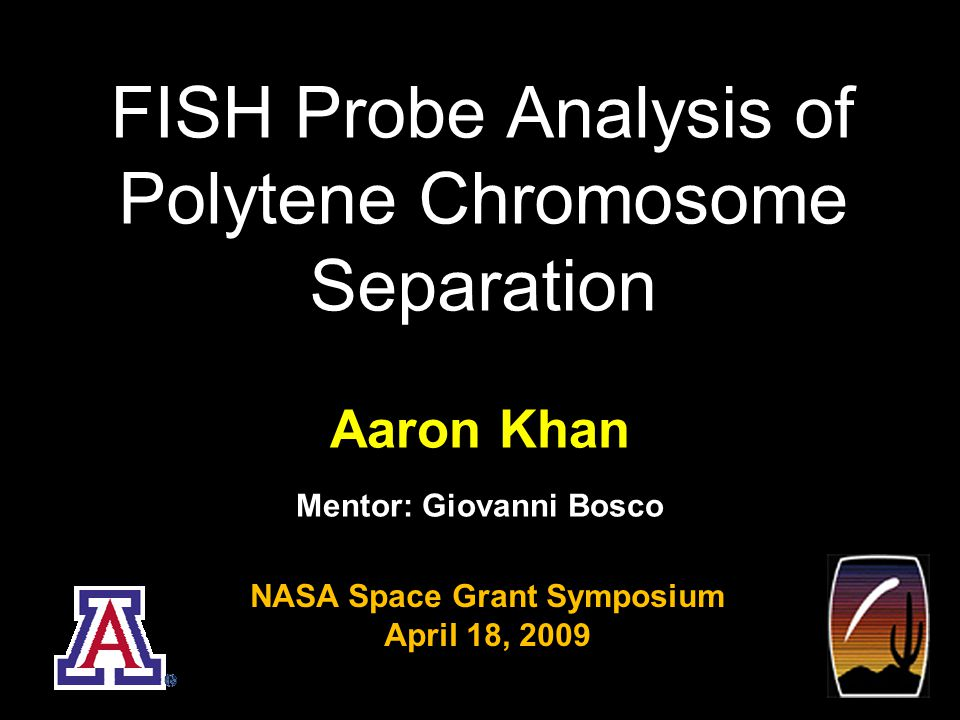 FISH Probe Analysis of Polytene Chromosome Separation 1 Aaron Khan Mentor: Giovanni Bosco NASA Space Grant Symposium April 18, 2009