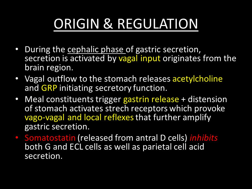 ORIGIN & REGULATION During the cephalic phase of gastric secretion, secretion is activated by vagal input originates from the brain region.