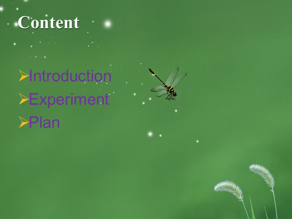Content  Introduction  Experiment  Plan