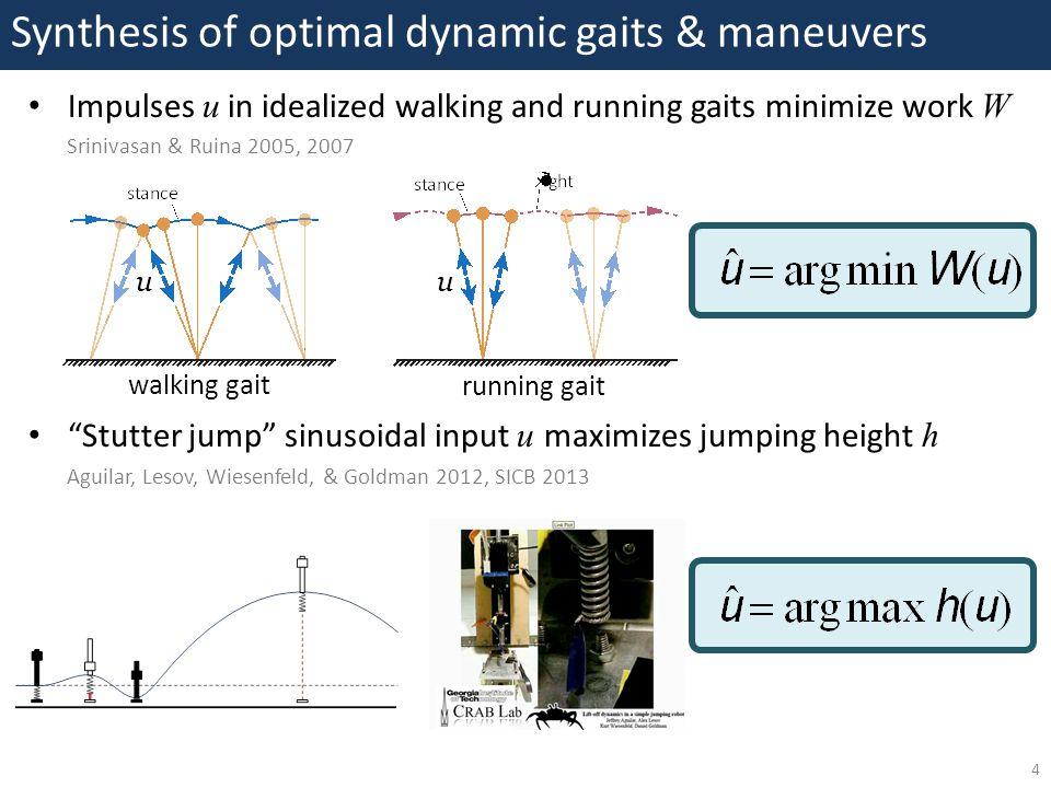 "Synthesis of optimal dynamic gaits & maneuvers 4 Impulses u in idealized walking and running gaits minimize work W Srinivasan & Ruina 2005, 2007 ""Stut"