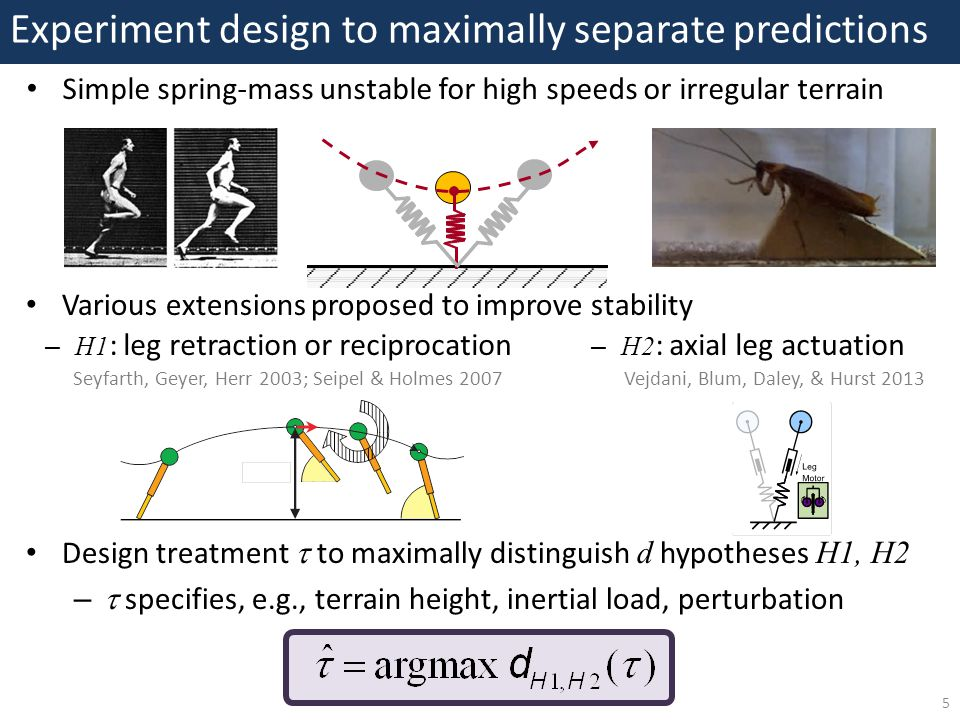 Experiment design to maximally separate predictions 5 Various extensions proposed to improve stability Vejdani, Blum, Daley, & Hurst 2013 Simple spring-mass unstable for high speeds or irregular terrain – H1 : leg retraction or reciprocation – H2 : axial leg actuation Design treatment  to maximally distinguish d hypotheses H1, H2 –  specifies, e.g., terrain height, inertial load, perturbation Seyfarth, Geyer, Herr 2003; Seipel & Holmes 2007