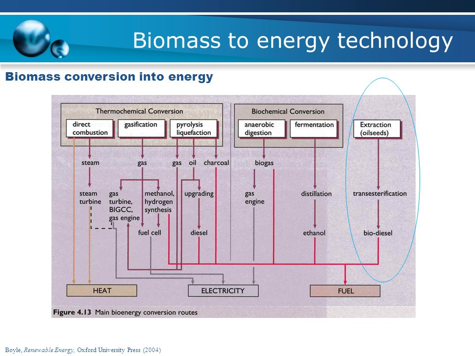 Biomass to energy technology Biomass conversion into energy Boyle, Renewable Energy, Oxford University Press (2004)