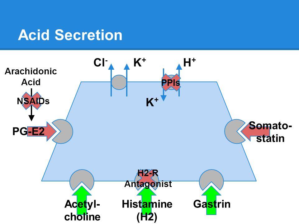 Acid Secretion H+H+ K+K+ Cl - K+K+ Histamine (H2) GastrinAcetyl- choline Somato- statin PG-E2 Arachidonic Acid NSAIDs PPIs H2-R Antagonist