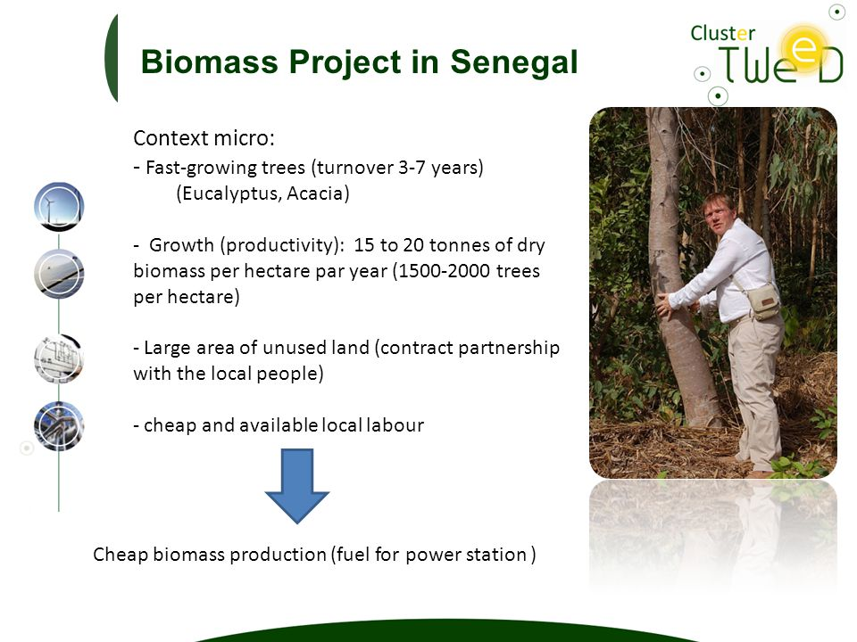 Context micro: - Fast-growing trees (turnover 3-7 years) (Eucalyptus, Acacia) - Growth (productivity): 15 to 20 tonnes of dry biomass per hectare par year (1500-2000 trees per hectare) - Large area of unused land (contract partnership with the local people) - cheap and available local labour Cheap biomass production (fuel for power station ) Biomass Project in Senegal