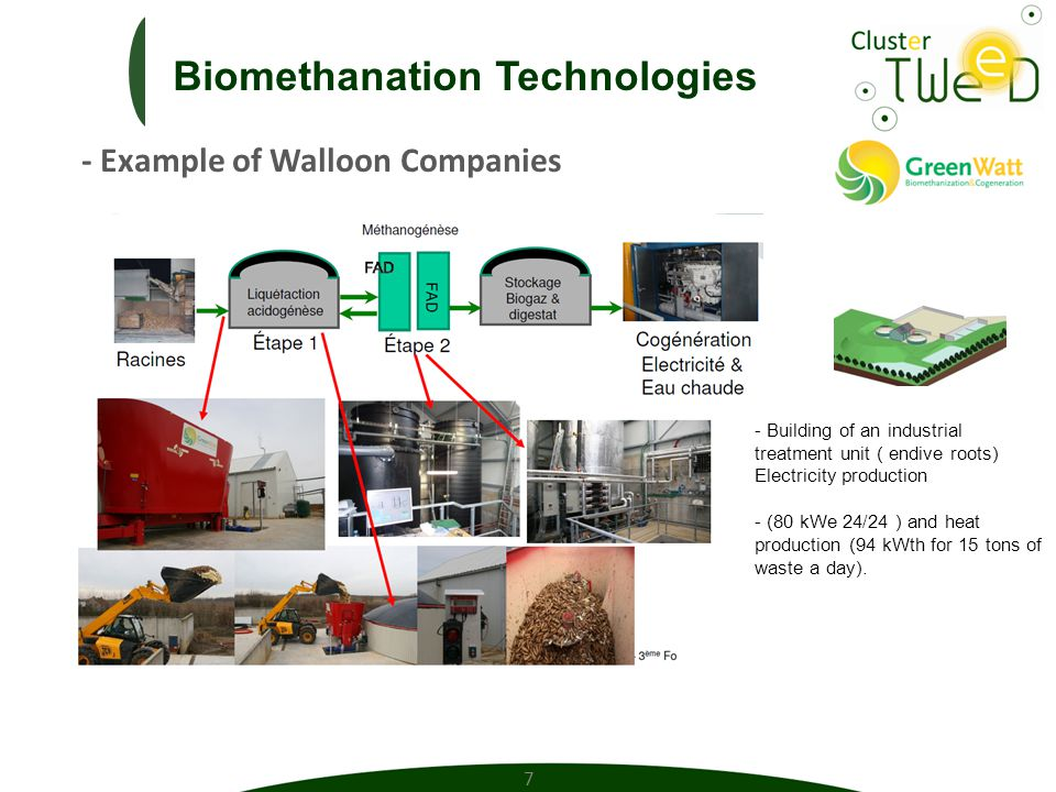 Cluster Technology of Wallonia Energy, Environment and sustainable Development TWEED Asbl Rue Natalis 2 – 4020 Liège – Belgium Cédric Brüll Directeur cbrull@clustertweed.be Maxime Beguin Ingénieur projet mbeguin@clustertweed.be Michael Corhay Responsable Projet mcorhay@clustertweed.be Dr Julie Leroy Projet Organext jleroy@clustertweed.be 18