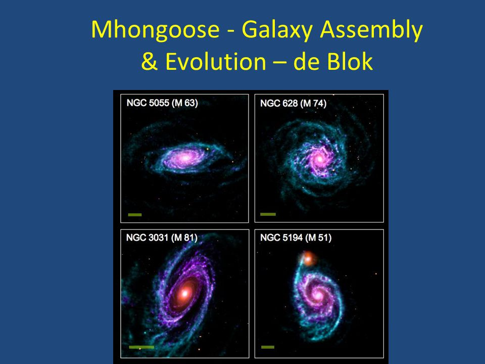 Mhongoose - Galaxy Assembly & Evolution – de Blok