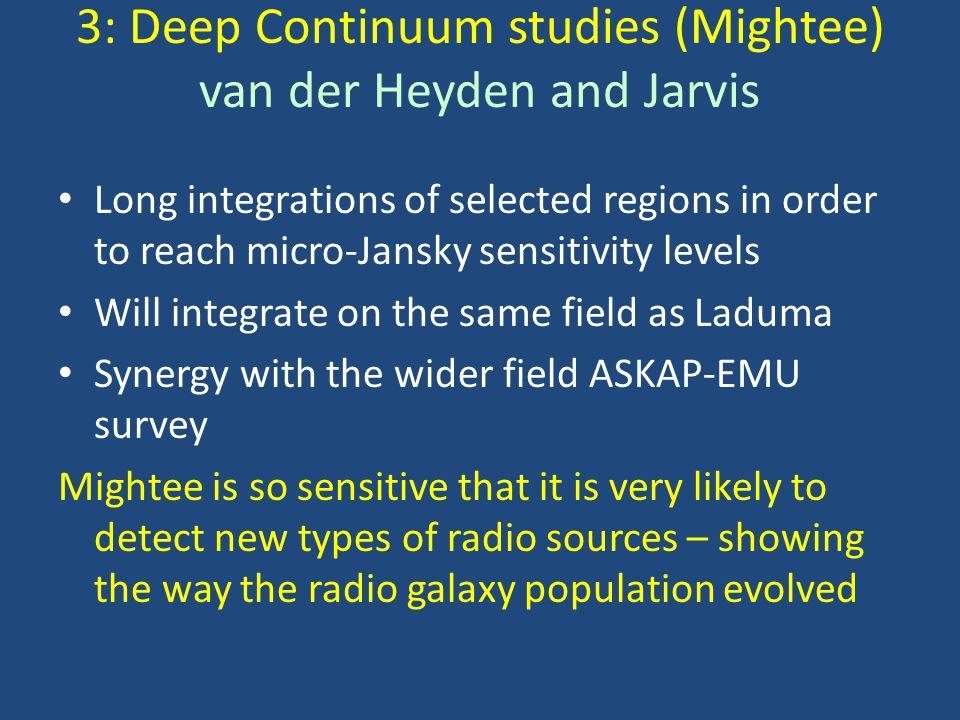 3: Deep Continuum studies (Mightee) van der Heyden and Jarvis Long integrations of selected regions in order to reach micro-Jansky sensitivity levels