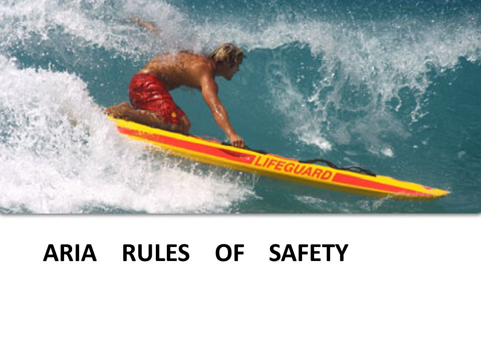 ARIA RULES OF SAFETY