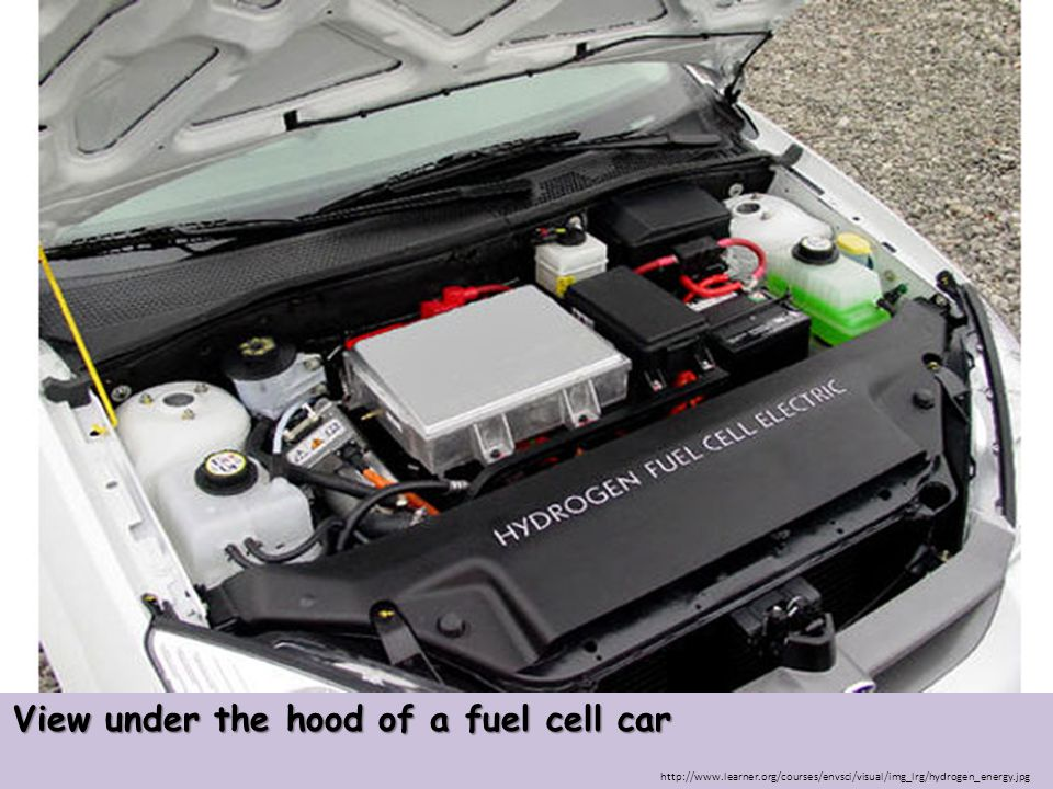 http://www.learner.org/courses/envsci/visual/img_lrg/hydrogen_energy.jpg View under the hood of a fuel cell car