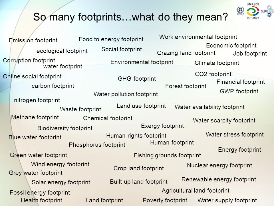 ecological footprint So many footprints…what do they mean? water footprint carbon footprint nitrogen footprint Social footprint Economic footprint Env