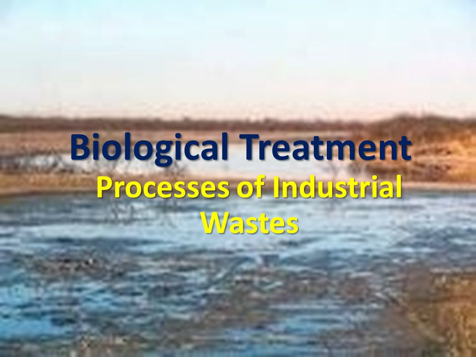 Biological Treatment Processes of Industrial Wastes