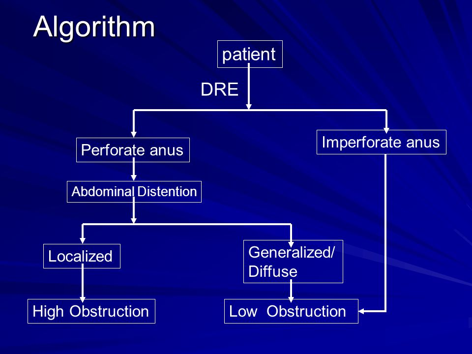 Algorithm patient Perforate anus Imperforate anus DRE Localized Generalized/ Diffuse Abdominal Distention High ObstructionLow Obstruction