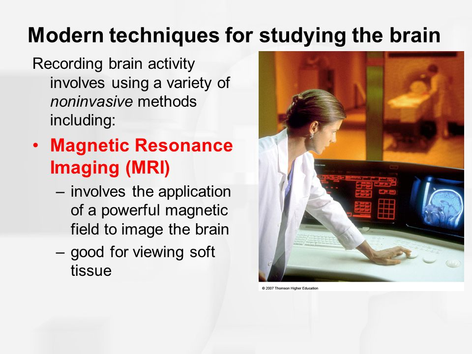 Modern techniques for studying the brain Electroencephalography (EEG) –Records electrical activity produced by cortical regions of the brain –Produces a record of brainwaves.