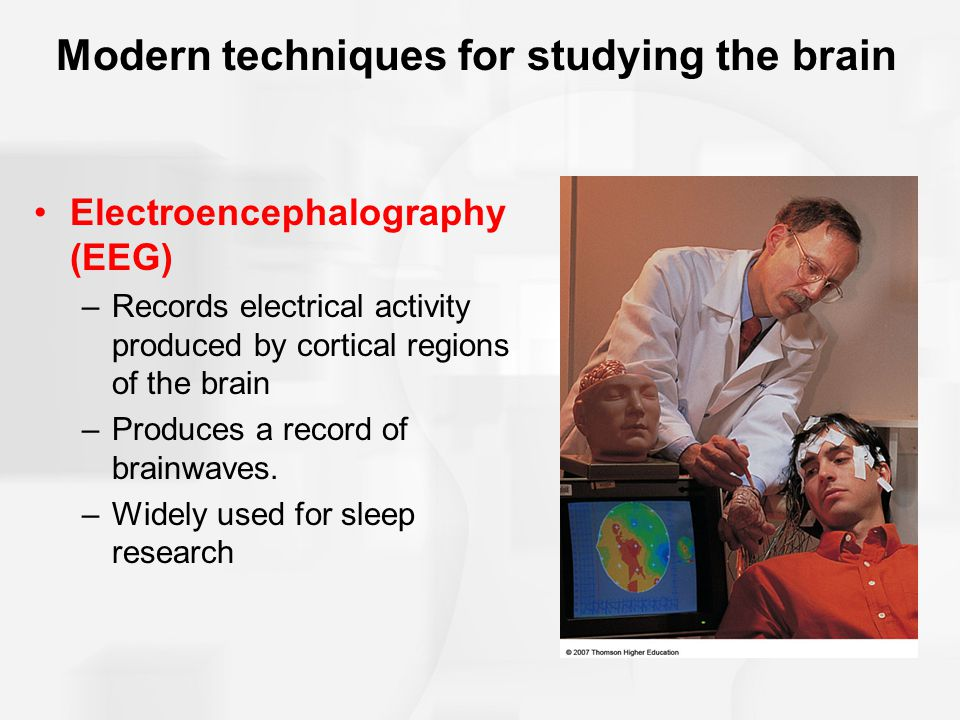 Modern techniques for studying the brain Electroencephalography (EEG) –Records electrical activity produced by cortical regions of the brain –Produces