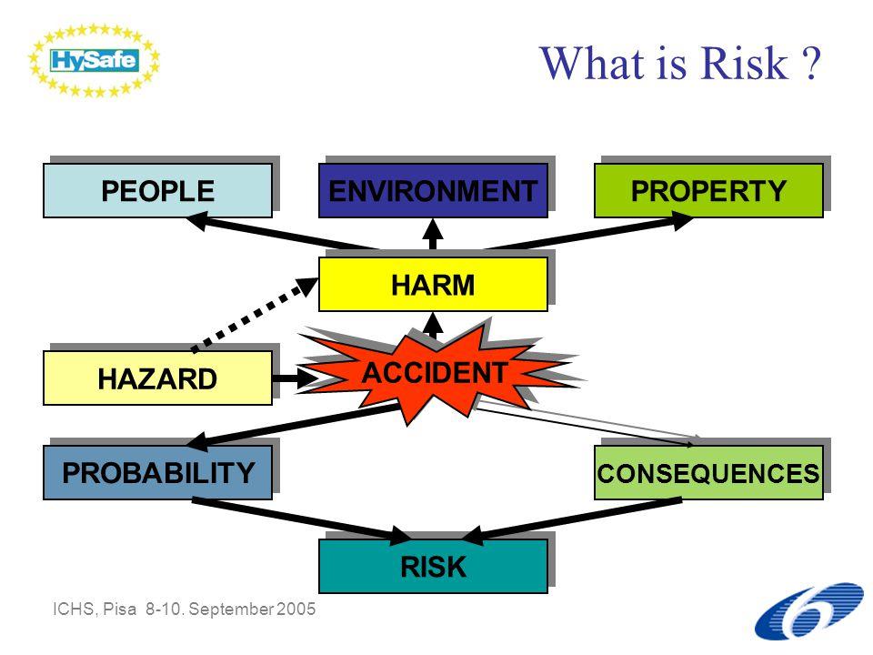 ICHS, Pisa 8-10.September 2005 What is Risk .