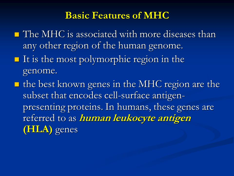 Basic Features of MHC The MHC is associated with more diseases than any other region of the human genome.