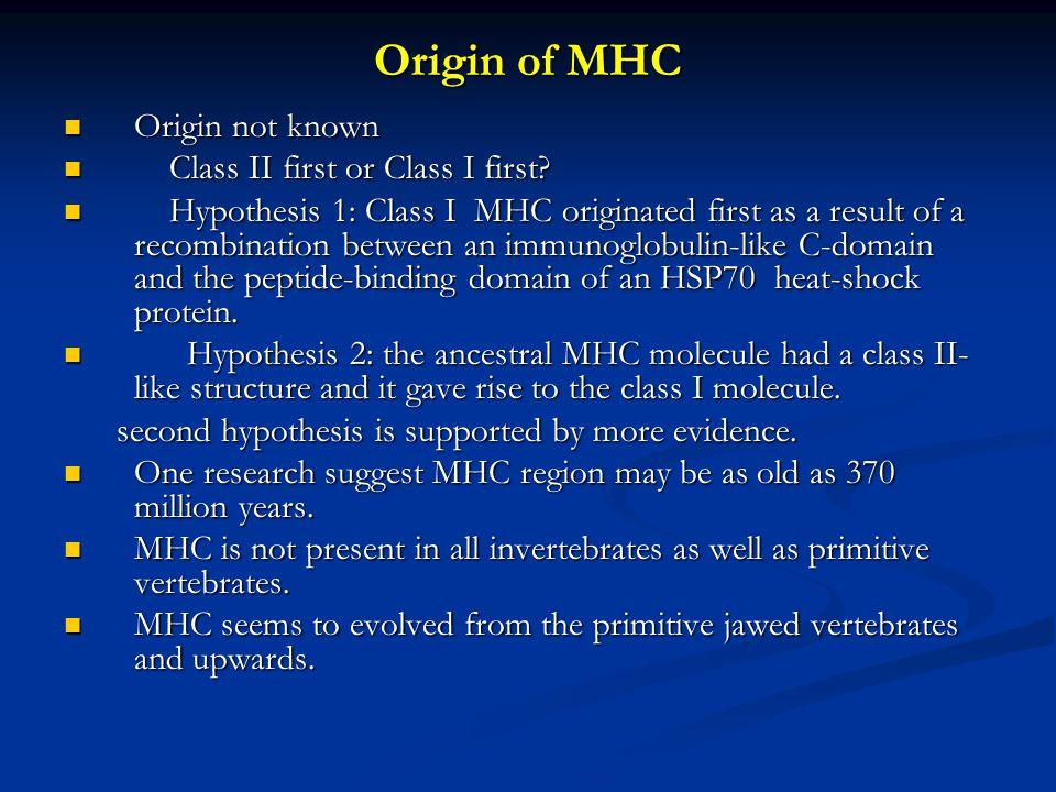 Origin of MHC Origin not known Origin not known Class II first or Class I first.