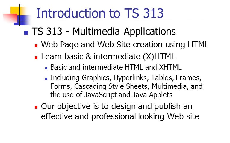 Introduction to TS 313 TS 313 - Multimedia Applications Web Page and Web Site creation using HTML Learn basic & intermediate (X)HTML Basic and intermediate HTML and XHTML Including Graphics, Hyperlinks, Tables, Frames, Forms, Cascading Style Sheets, Multimedia, and the use of JavaScript and Java Applets Our objective is to design and publish an effective and professional looking Web site