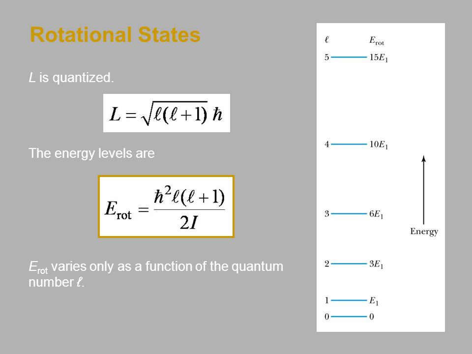 Rotational States L is quantized. The energy levels are E rot varies only as a function of the quantum number ℓ.