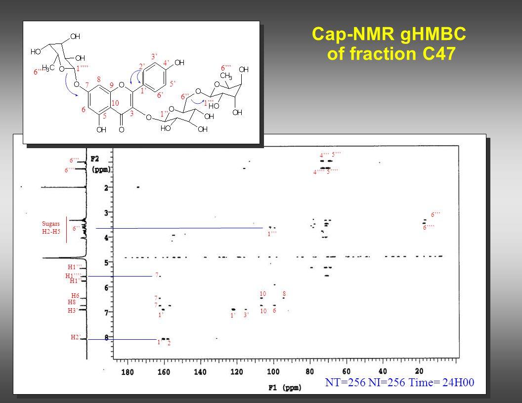 Cap-NMR gHMBC of fraction C47 NT=256 NI=256 Time= 24H00 1' 2 7 7 H2' H3' H8 H6 H1'' H1''' H1'''' 6'''' 6''' 7 1''' 6'''' 6''' 108 6 1' 3' 2' 3' 4' 5'