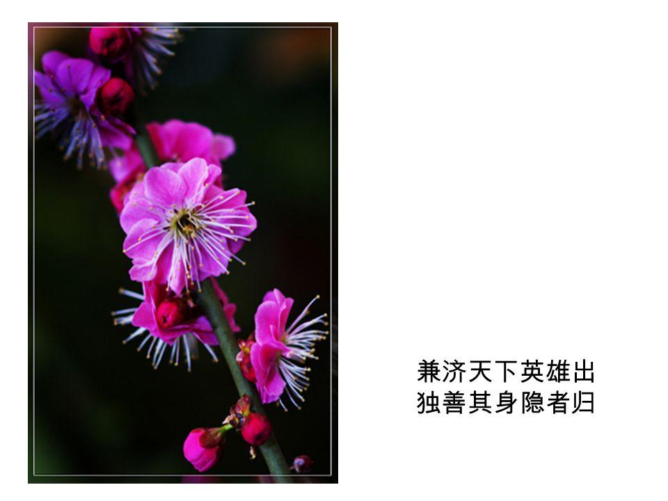 徽墨端砚长江的水 一笔写出了两个梅