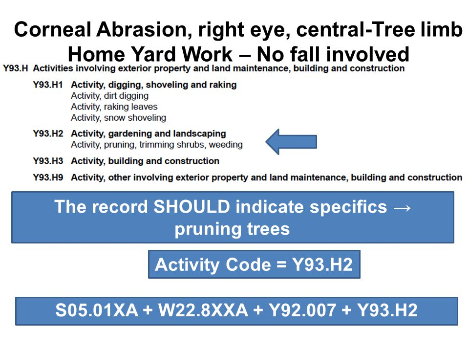Corneal Abrasion, right eye, central-Tree limb Home Yard Work – No fall involved The record SHOULD indicate specifics → pruning trees Activity Code =