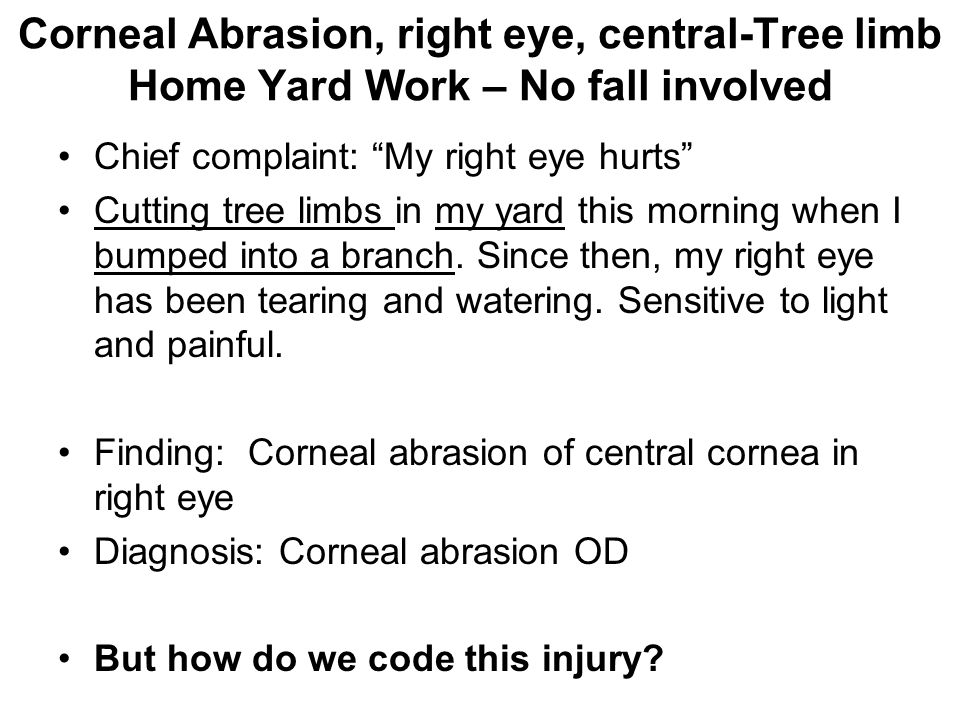 """Chief complaint: """"My right eye hurts"""" Cutting tree limbs in my yard this morning when I bumped into a branch. Since then, my right eye has been tearin"""