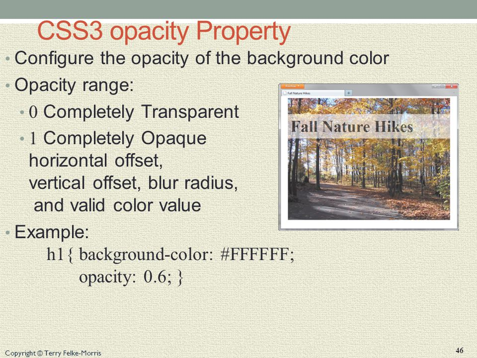Copyright © Terry Felke-Morris CSS3 opacity Property Configure the opacity of the background color Opacity range: 0 Completely Transparent 1 Completely Opaque horizontal offset, vertical offset, blur radius, and valid color value Example: h1{ background-color: #FFFFFF; opacity: 0.6; } 46