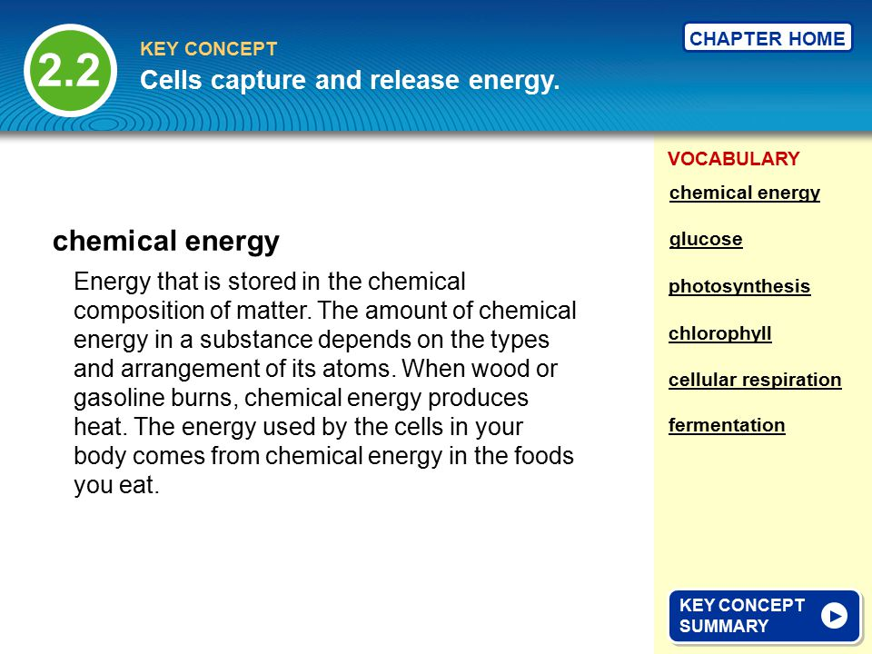 VOCABULARY KEY CONCEPT CHAPTER HOME Energy that is stored in the chemical composition of matter.