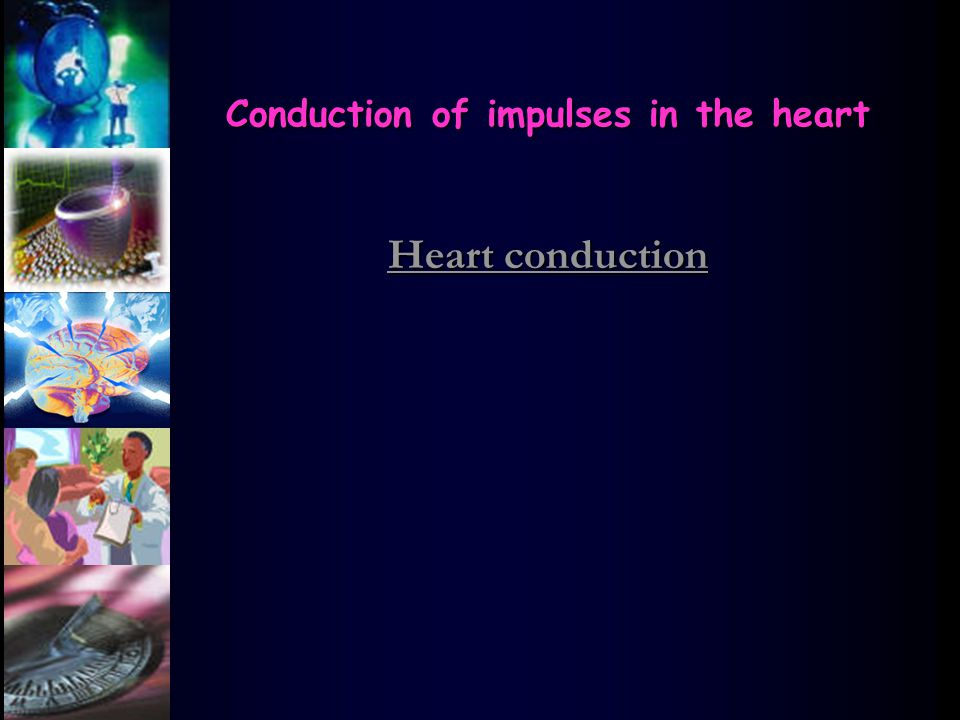 Conduction of impulses in the heart Heart conduction Heart conduction