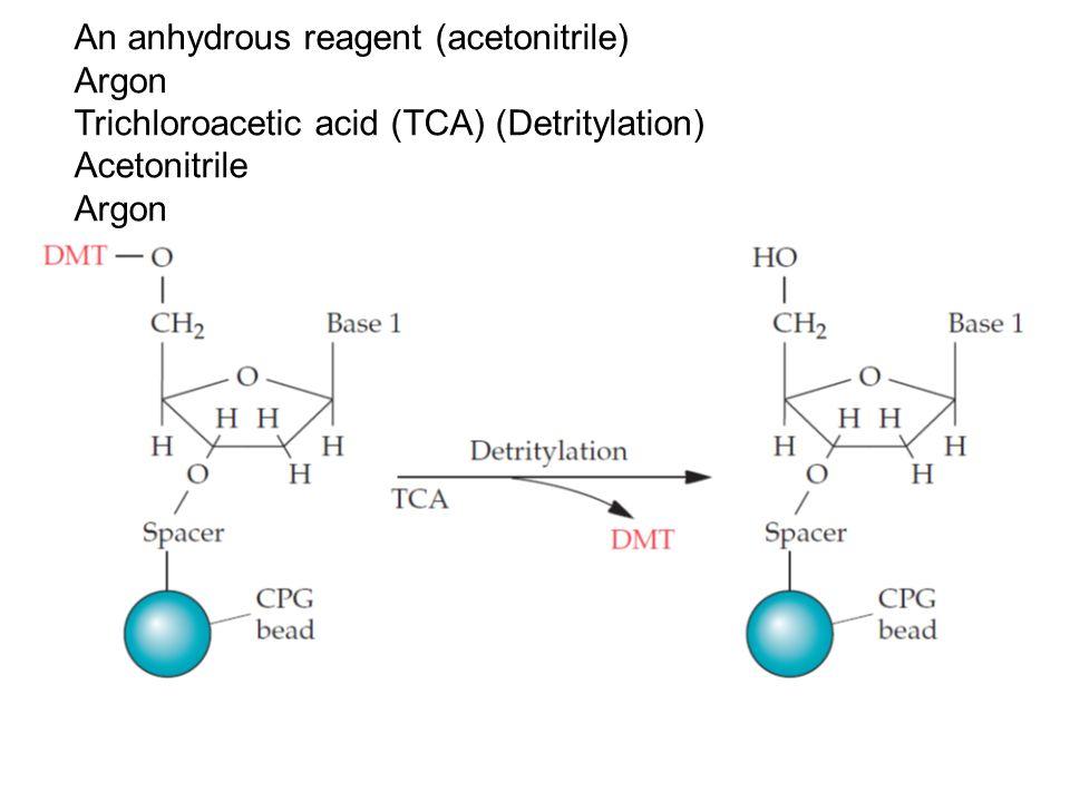 90 Summary of protein folding in the endoplasmic reticulum of yeast cells.