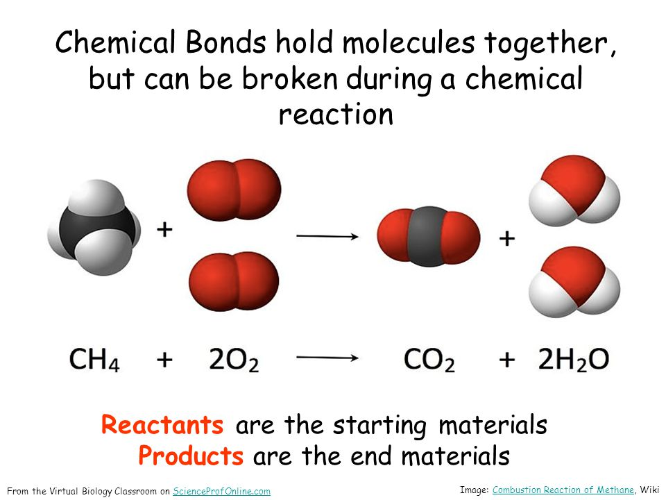 Chemical Bonds hold molecules together, but can be broken during a chemical reaction Reactants are the starting materials Products are the end materia