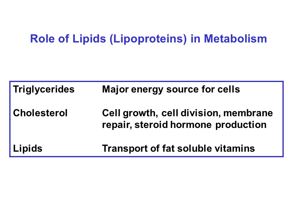 Role of Lipids (Lipoproteins) in Metabolism TriglyceridesMajor energy source for cells CholesterolCell growth, cell division, membrane repair, steroid