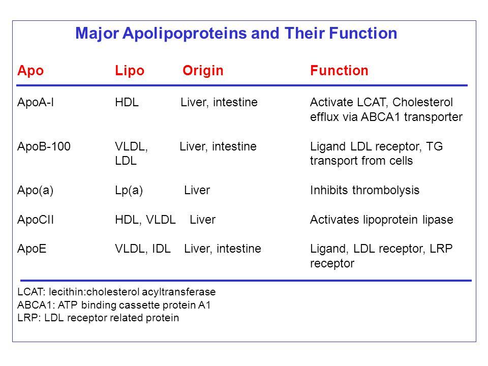Major Apolipoproteins and Their Function ApoLipo OriginFunction ApoA-IHDL Liver, intestineActivate LCAT, Cholesterol efflux via ABCA1 transporter ApoB