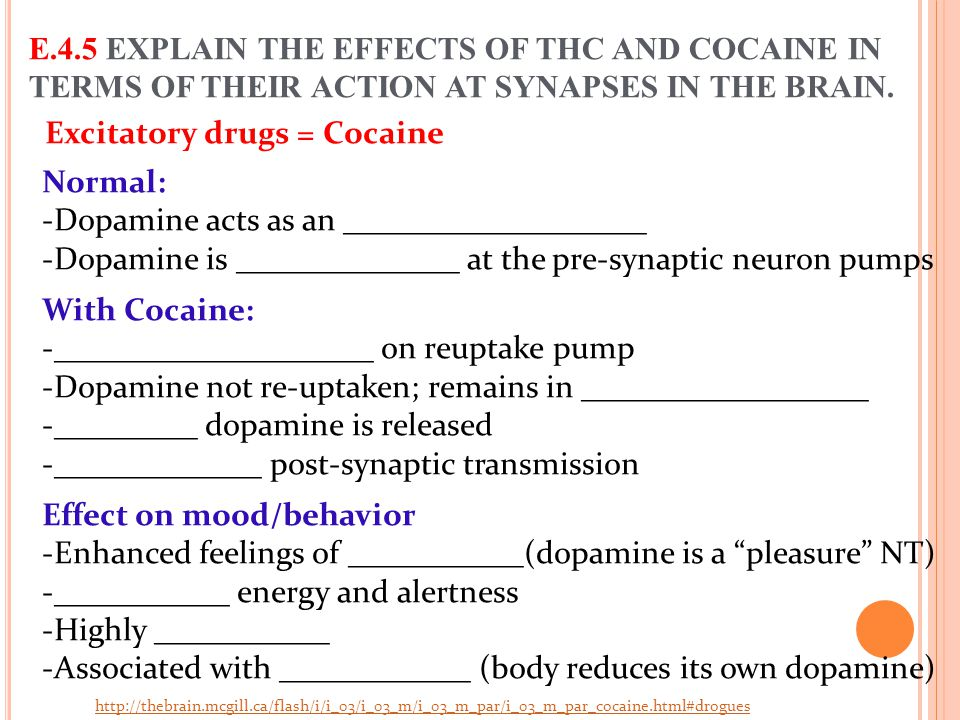 Excitatory drugs = Cocaine E.4.5 EXPLAIN THE EFFECTS OF THC AND COCAINE IN TERMS OF THEIR ACTION AT SYNAPSES IN THE BRAIN. Normal: -Dopamine acts as a