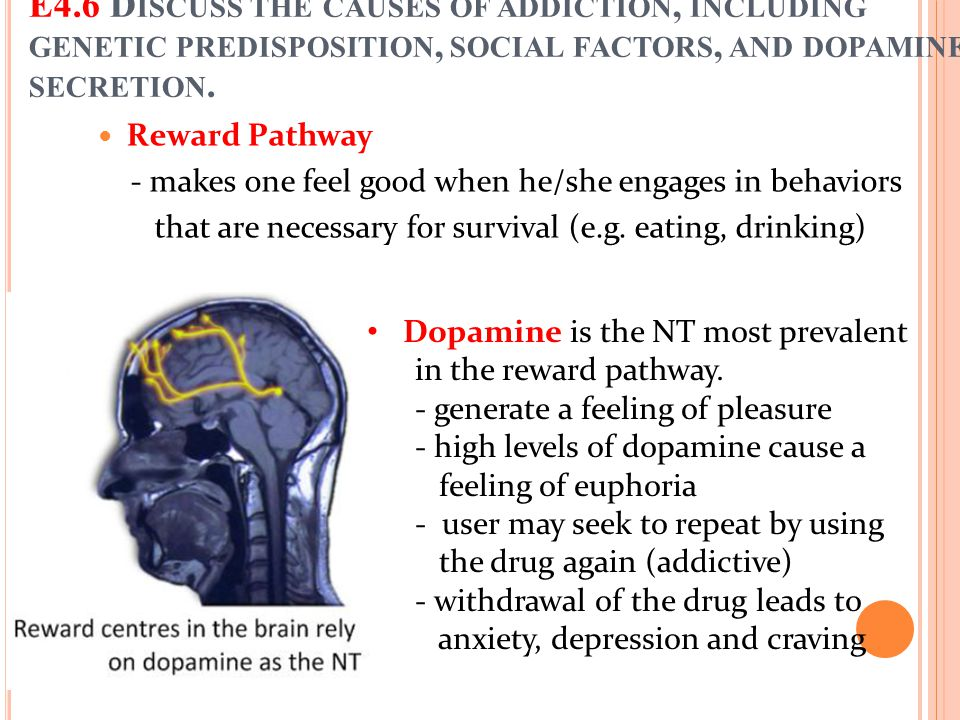 Reward Pathway - makes one feel good when he/she engages in behaviors that are necessary for survival (e.g. eating, drinking) E4.6 D ISCUSS THE CAUSES
