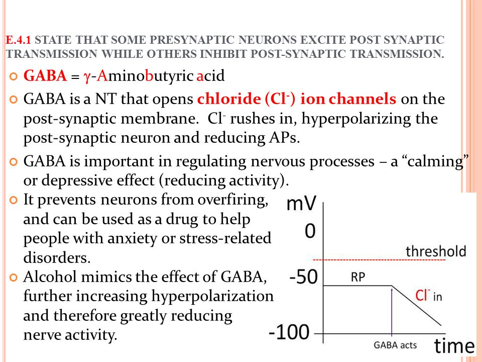 GABA =  -Aminobutyric acid GABA is a NT that opens chloride (Cl - ) ion channels on the post-synaptic membrane. Cl - rushes in, hyperpolarizing the p