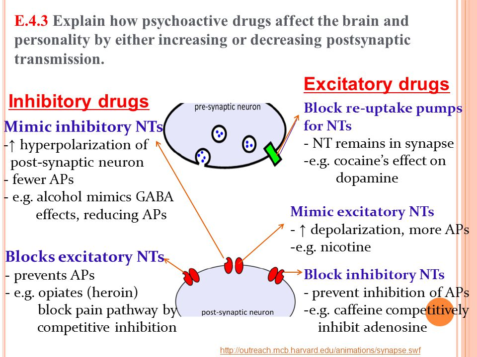 E.4.3 Explain how psychoactive drugs affect the brain and personality by either increasing or decreasing postsynaptic transmission. http://outreach.mc