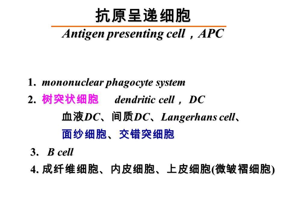 1. mononuclear phagocyte system 1. mononuclear phagocyte system 2.
