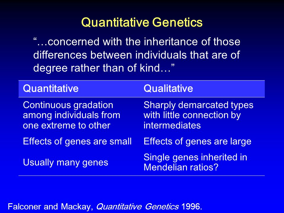 Quantitative Genetics …concerned with the inheritance of those differences between individuals that are of degree rather than of kind… QuantitativeQualitative Continuous gradation among individuals from one extreme to other Sharply demarcated types with little connection by intermediates Effects of genes are smallEffects of genes are large Usually many genes Single genes inherited in Mendelian ratios.